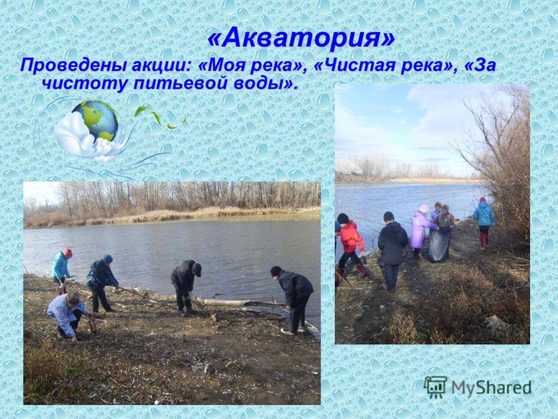 «Акватория» «Акватория» Проведены акции: «Моя река», «Чистая река», «За чистоту питьевой воды».