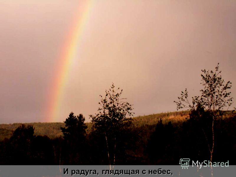 И радуга, глядящая с небес,