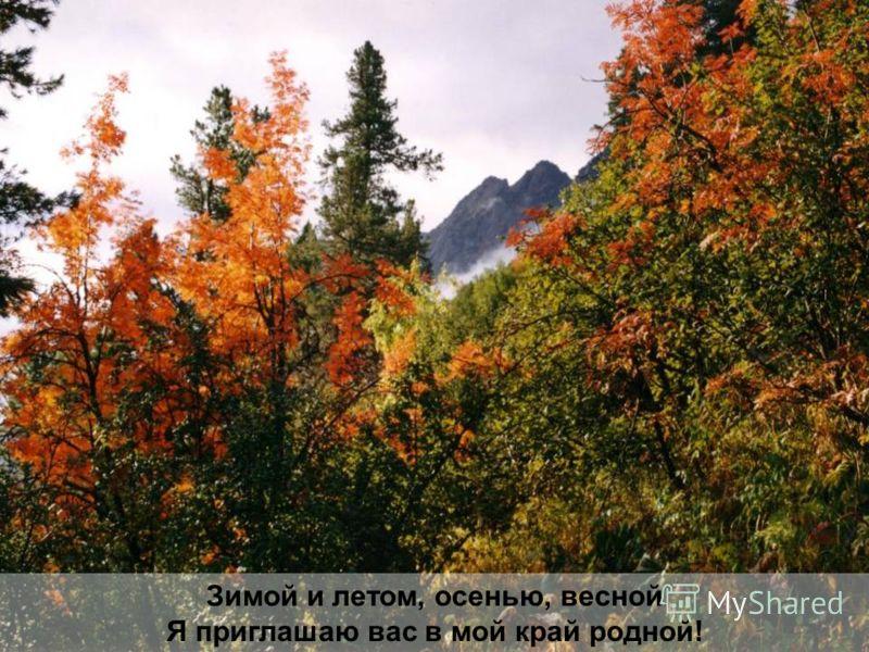 Зимой и летом, осенью, весной Я приглашаю вас в мой край родной!