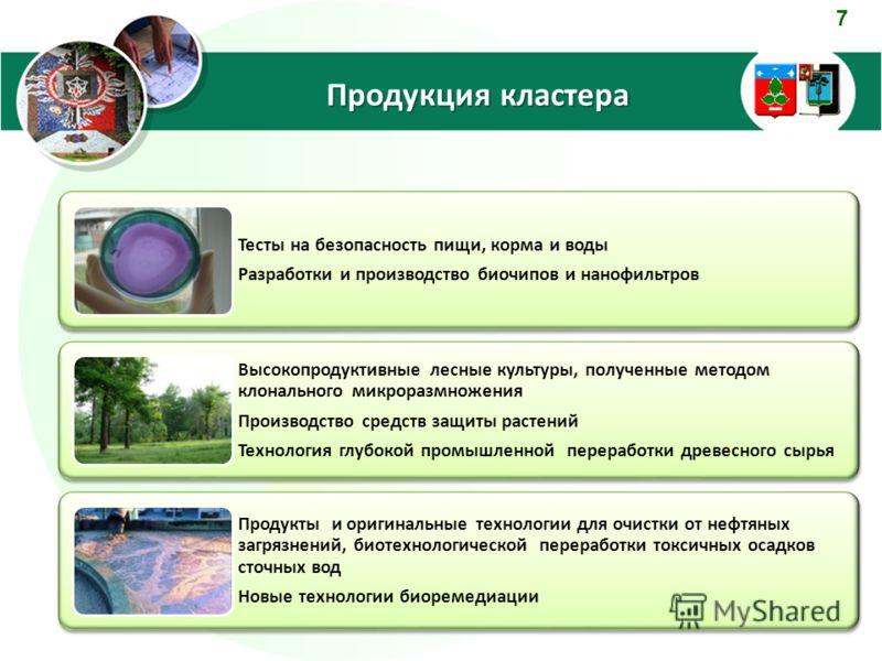 7 Продукция кластера Тесты на безопасность пищи, корма и воды Разработки и производство биочипов и нанофильтров Высокопродуктивные лесные культуры, полученные методом клонального микроразмножения Производство средств защиты растений Технология глубок