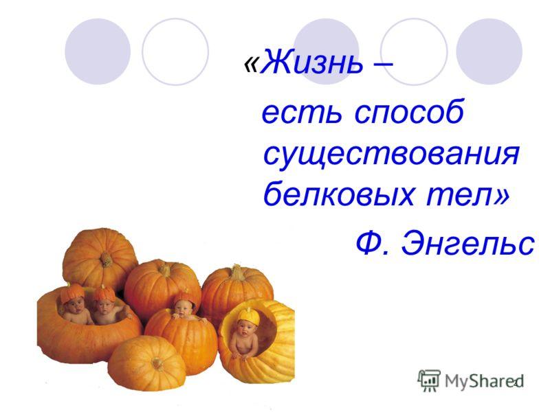 2 «Жизнь – есть способ существования белковых тел» Ф. Энгельс