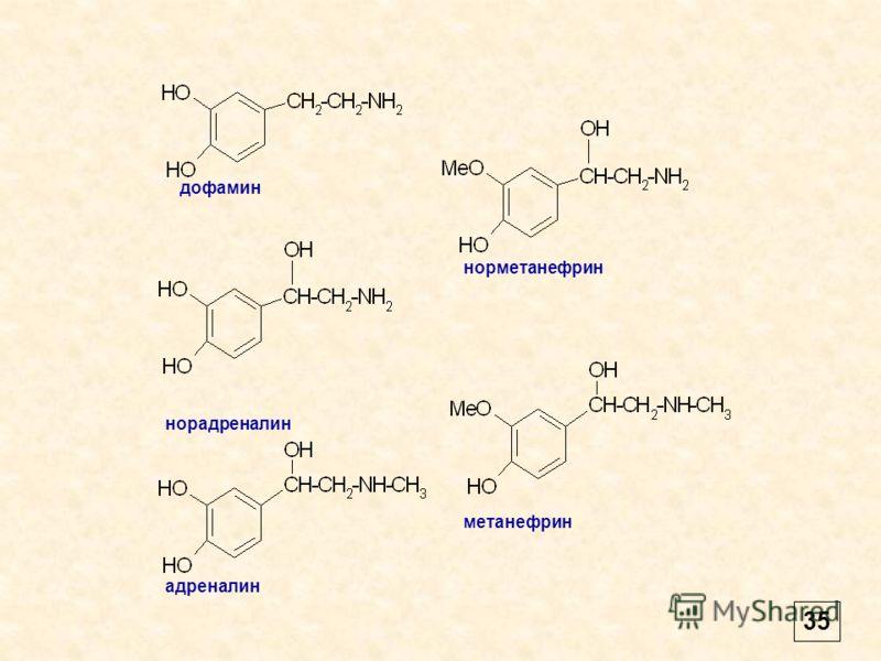дофамин норадреналин адреналин норметанефрин метанефрин 35