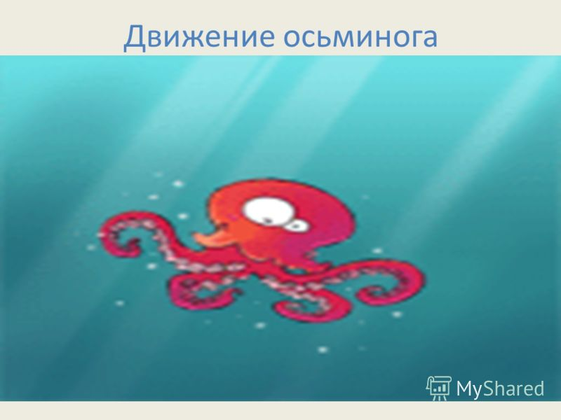 Движение осьминога