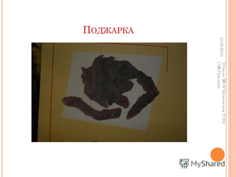 П ОДЖАРКА 19.06.2013 10 класс МОУ Кочневская СОШ О.М.Грязнова