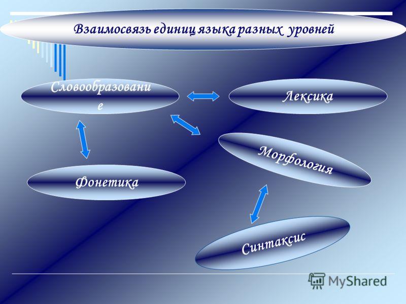 Взаимосвязь единиц языка разных уровней Словообразовани е Лексика Морфология Синтаксис Фонетика