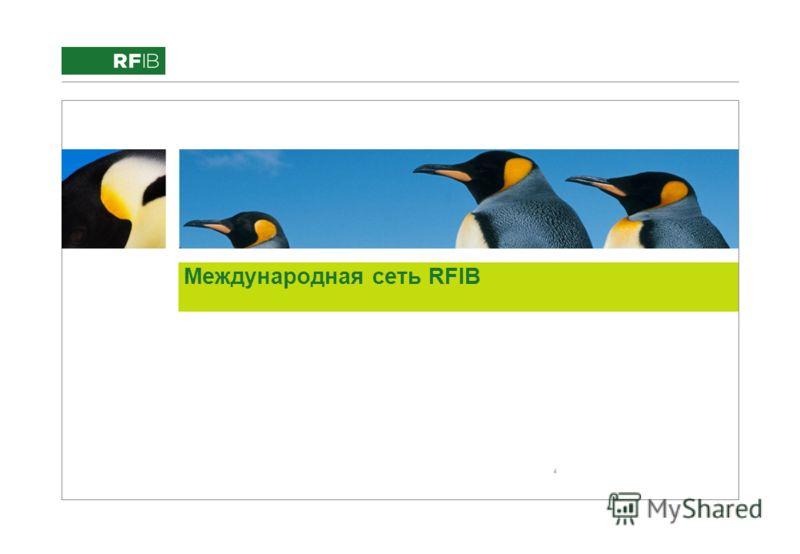4 Международная сеть RFIB
