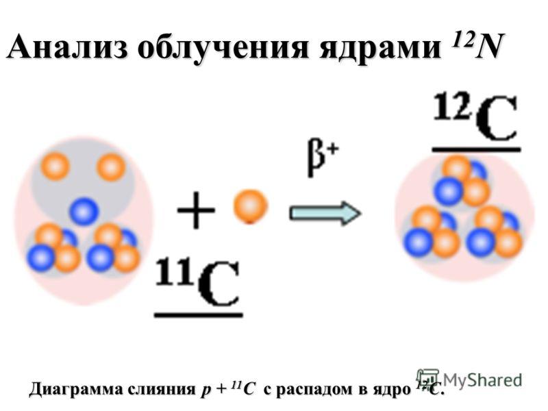 Диаграмма слияния p + 11 C с распадом в ядро 12 C. Анализ облучения ядрами 12 N