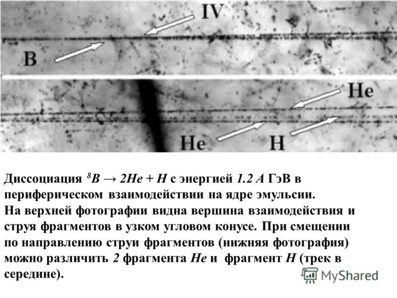 Диссоциация 8 В 2Не + Н c энергией 1.2 A ГэВ в периферическом взаимодействии на ядре эмульсии. На верхней фотографии видна вершина взаимодействия и струя фрагментов в узком угловом конусе. При смещении по направлению струи фрагментов (нижняя фотограф