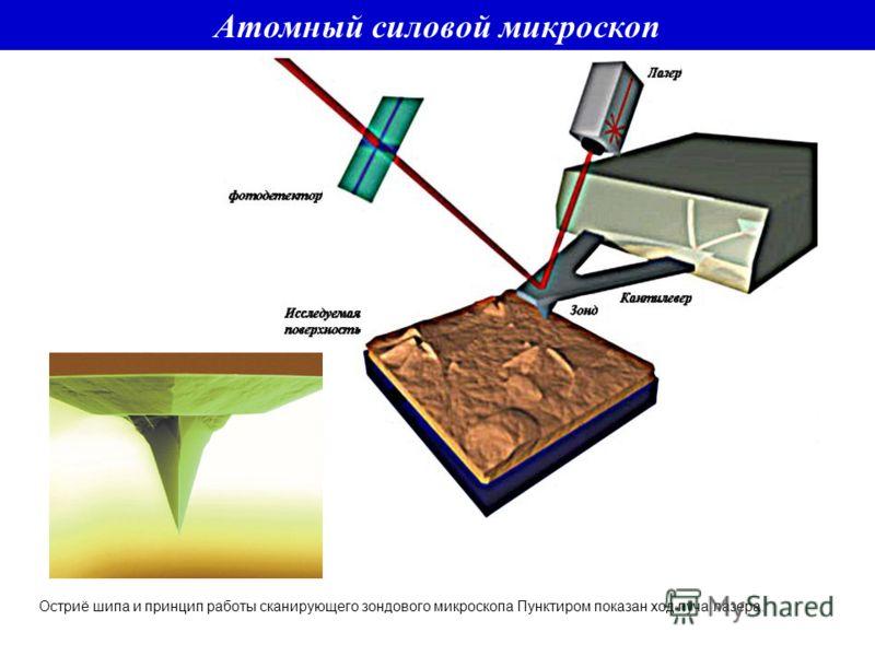 Остриё шипа и принцип работы сканирующего зондового микроскопа Пунктиром показан ход луча лазера. Атомный силовой микроскоп