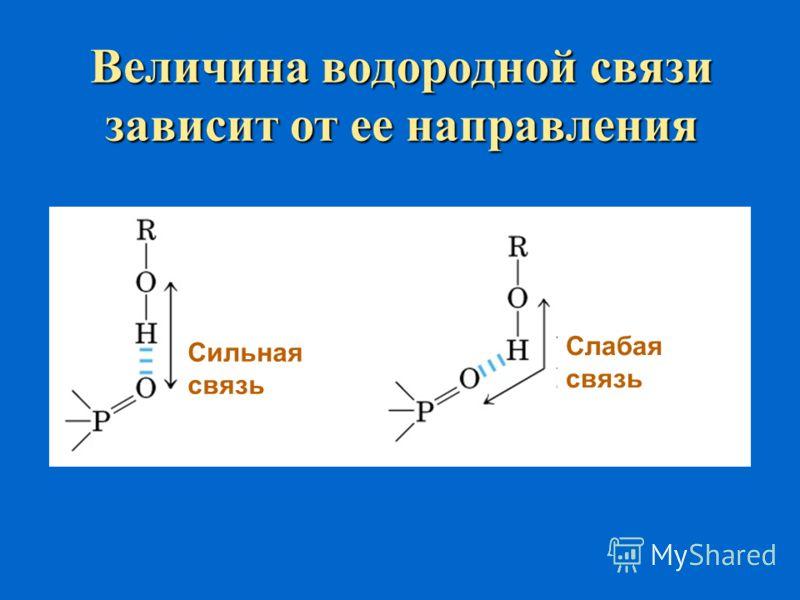 Пример множественных межмолекулярных водородных связей