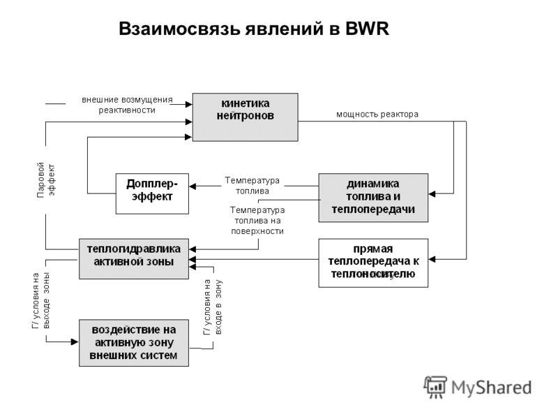 Взаимосвязь явлений в BWR