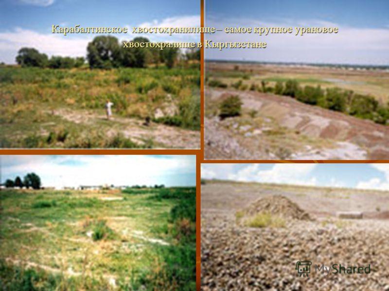 Карабалтинское хвостохранилище – самое крупное урановое хвостохралище в Кыргызстане