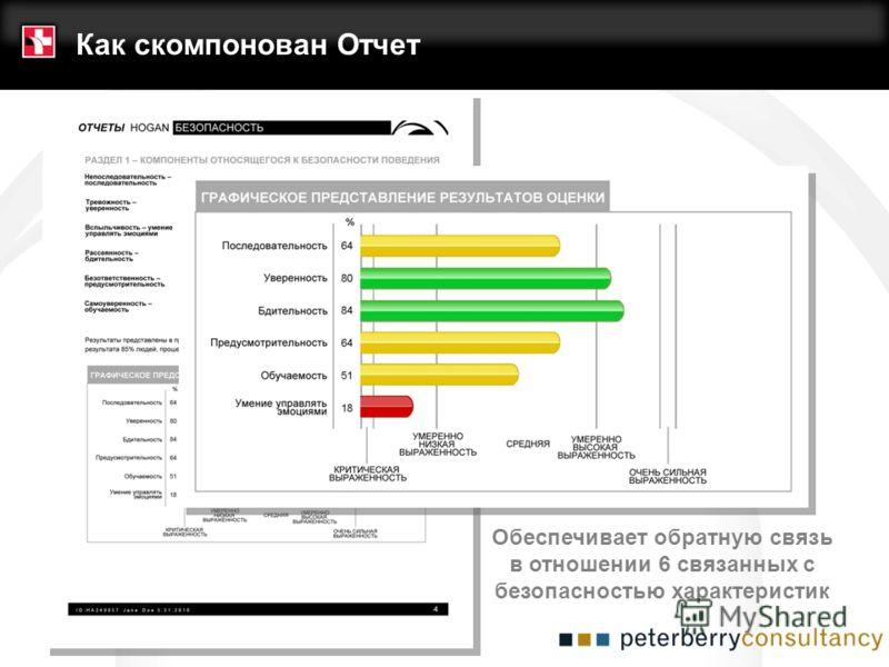 Обеспечивает обратную связь в отношении 6 связанных с безопасностью характеристик Как скомпонован Отчет