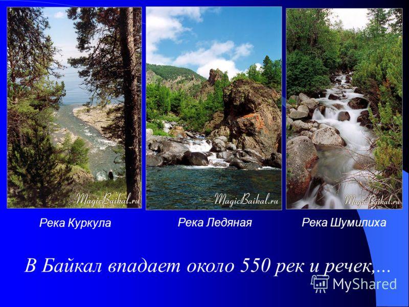 Река Куркула Река ЛедянаяРека Шумилиха В Байкал впадает около 550 рек и речек,...