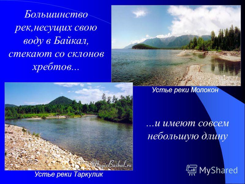 Устье реки Молокон Устье реки Таркулик Большинство рек,несущих свою воду в Байкал, стекают со склонов хребтов......и имеют совсем небольшую длину