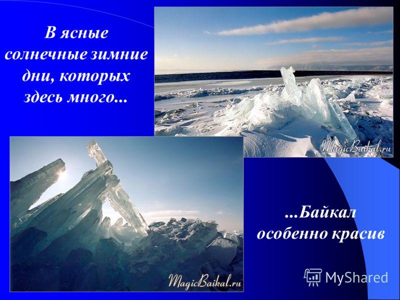 В ясные солнечные зимние дни, которых здесь много......Байкал особенно красив