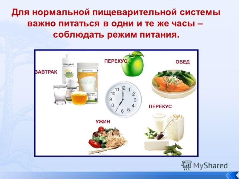 Для нормальной пищеварительной системы важно питаться в одни и те же часы – соблюдать режим питания.