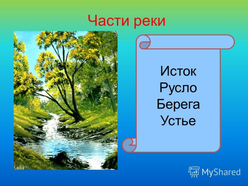 Части реки Исток Русло Берега Устье