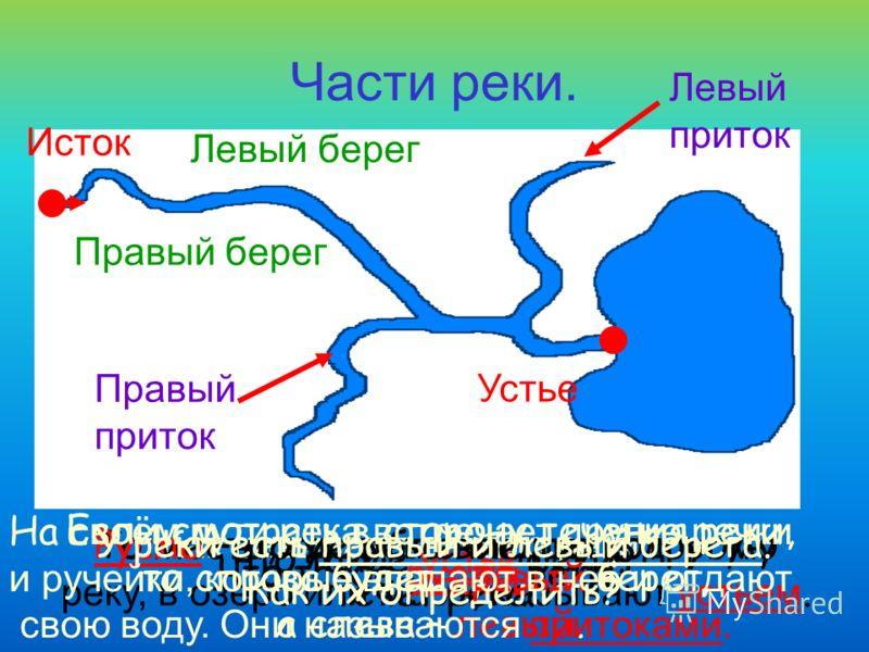 Части реки. Как называют начало реки? Исток Что такое устье реки? То место, где река впадает в другую реку, в озеро или море, называют устьем. Устье Что такое русло реки? Русло –это углубление, по которому течёт река. У реки есть правый и левый берег