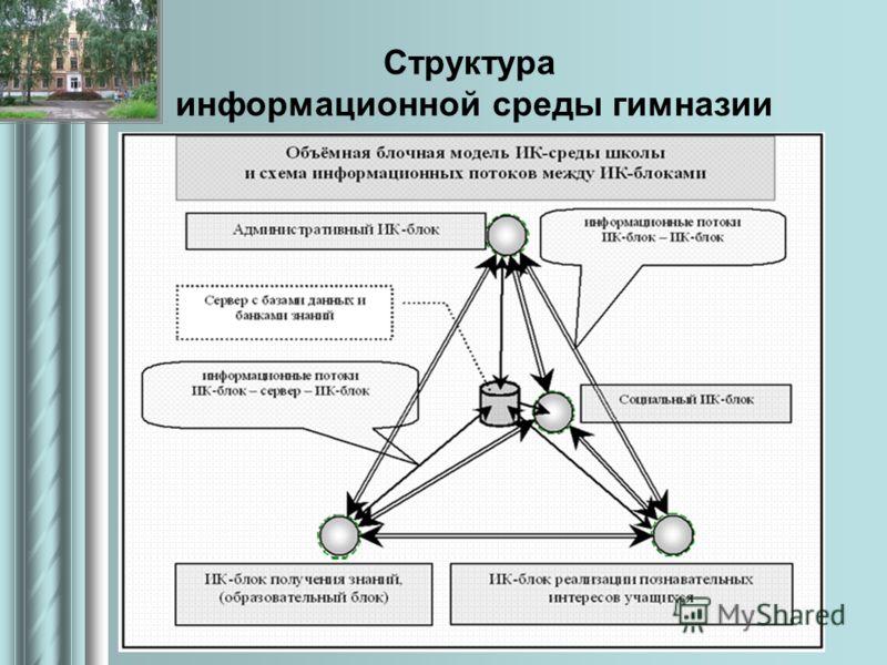 Структура информационной среды гимназии