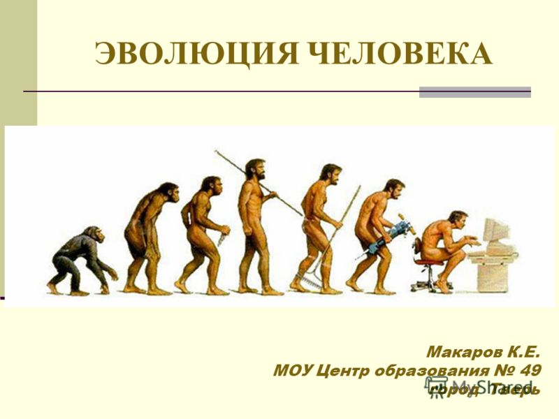 ЭВОЛЮЦИЯ ЧЕЛОВЕКА Макаров К.Е. МОУ Центр образования 49 город Тверь