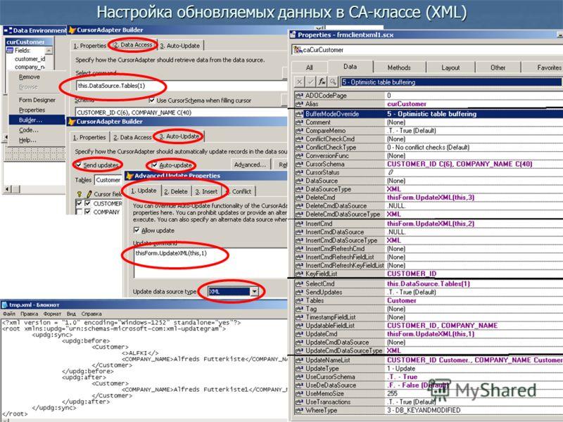 Настройка обновляемых данных в CA-классе (XML)
