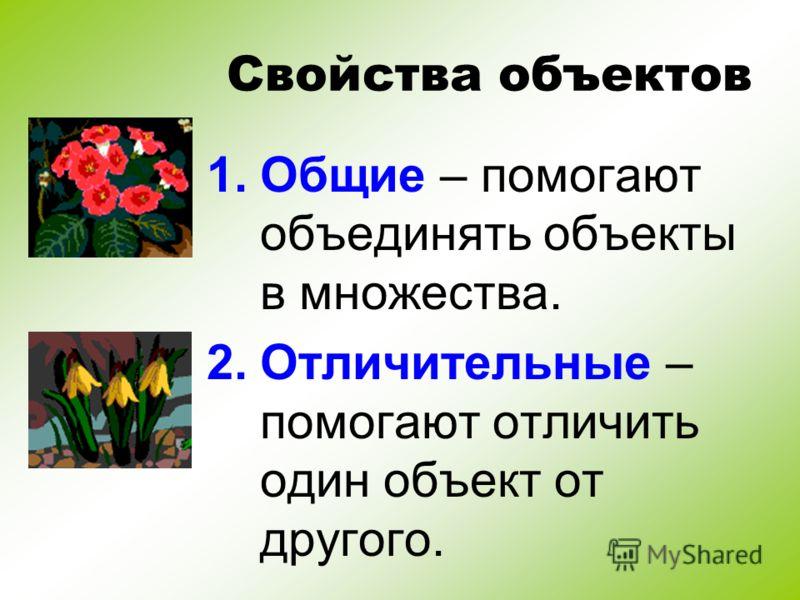 Свойства объектов 1.Общие – помогают объединять объекты в множества. 2.Отличительные – помогают отличить один объект от другого.