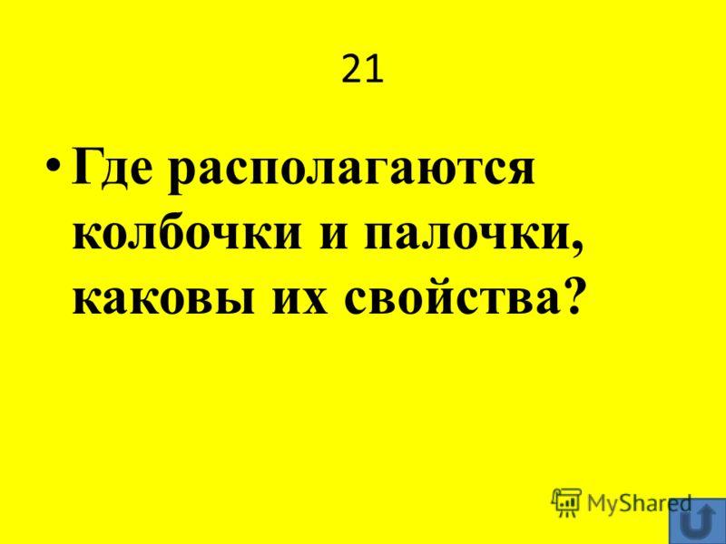 21 Где располагаются колбочки и палочки, каковы их свойства?