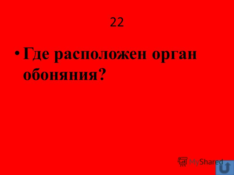 22 Где расположен орган обоняния?