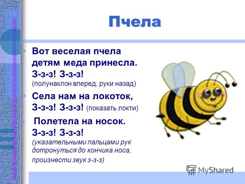 Вот веселая пчела детям меда принесла. З-з-з! З-з-з! (полунаклон вперед, руки назад) Села нам на локоток, З-з-з! З-з-з! (показать локти) Полетела на носок. З-з-з! З-з-з! (указательными пальцами рук дотронуться до кончика носа, произнести звук з-з-з)