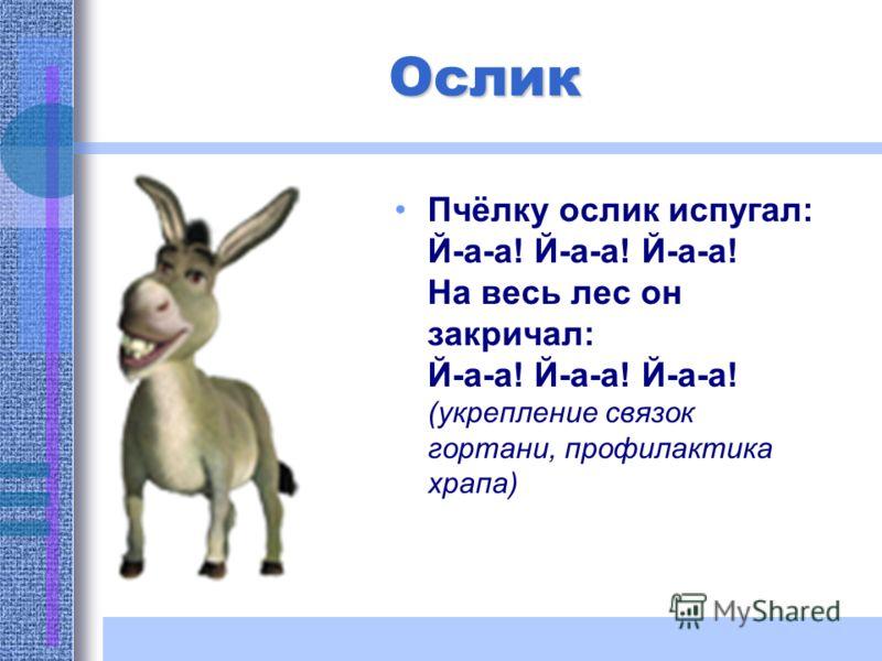 Ослик Пчёлку ослик испугал: Й-а-а! Й-а-а! Й-а-а! На весь лес он закричал: Й-а-а! Й-а-а! Й-а-а! (укрепление связок гортани, профилактика храпа)