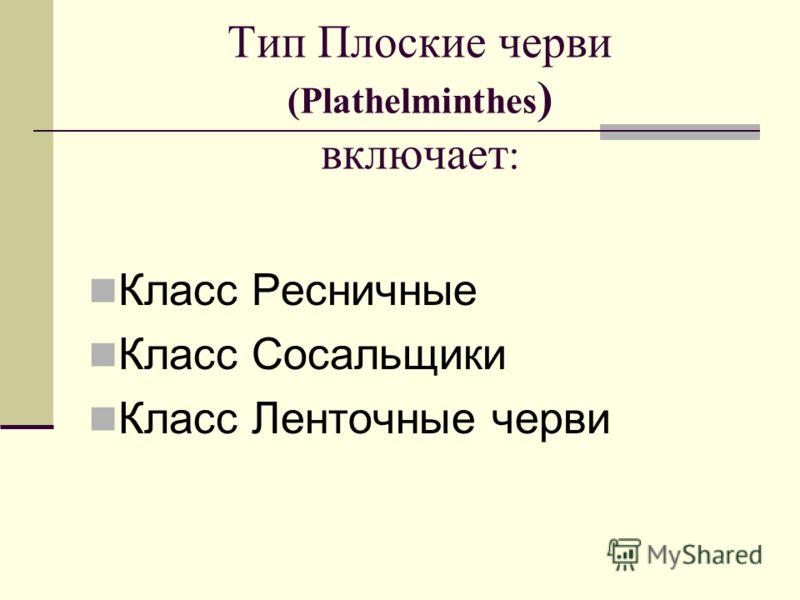 Тип Плоские черви (Plathelminthes ) включает : Класс Ресничные Класс Сосальщики Класс Ленточные черви
