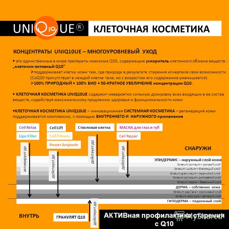 UNI UE R КЛЕТОЧНАЯ КОСМЕТИКА АКТИВная профилактика старения с Q10 КОНЦЕНТРАТЫ UNIQ10UE – МНОГОУРОВНЕВЫЙ УХОД это единственные в мире препараты коэнзима Q10, содержащие ускоритель клеточного обмена веществ - клеточно-активный Q10 поддерживает клетку к