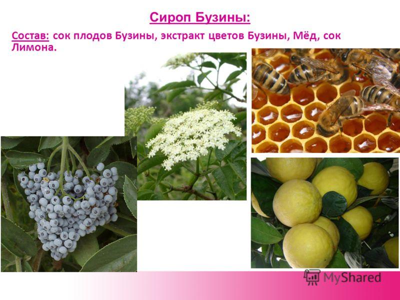 Сироп Бузины: Состав: сок плодов Бузины, экстракт цветов Бузины, Мёд, сок Лимона.