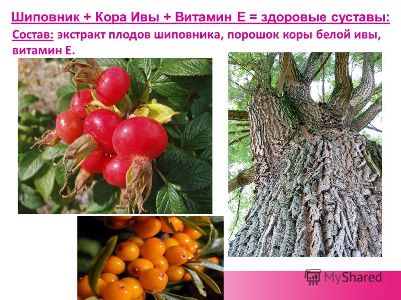 Шиповник + Кора Ивы + Витамин Е = здоровые суставы: Состав: экстракт плодов шиповника, порошок коры белой ивы, витамин Е.