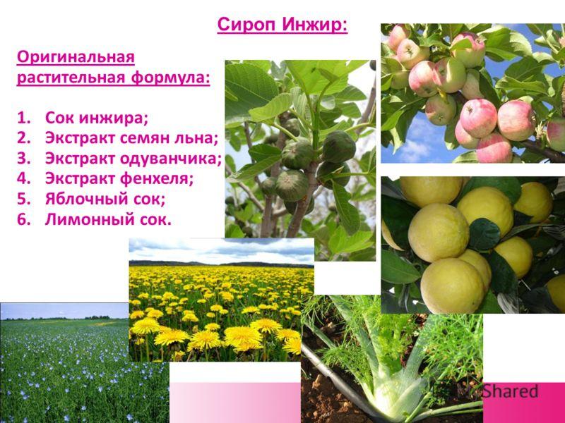 Сироп Инжир: Оригинальная растительная формула: 1.Сок инжира; 2.Экстракт семян льна; 3.Экстракт одуванчика; 4.Экстракт фенхеля; 5.Яблочный сок; 6.Лимонный сок.