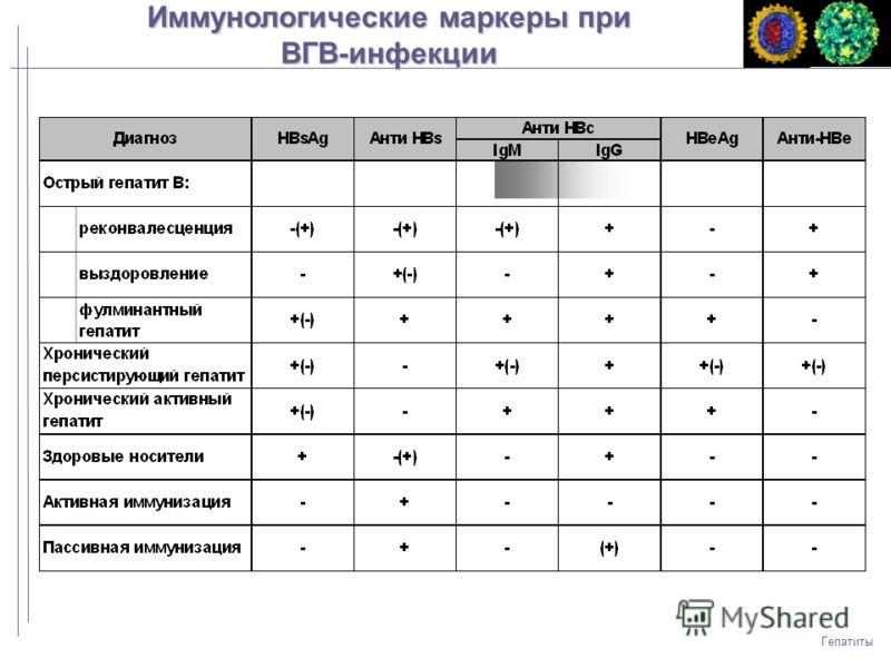 Гепатиты Иммунологические маркеры при ВГВ-инфекции