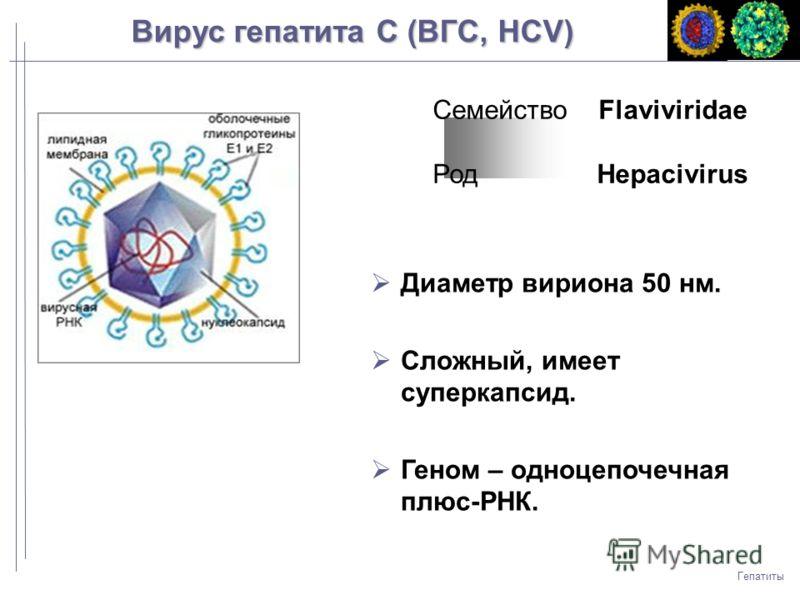 Гепатиты Диаметр вириона 50 нм. Сложный, имеет суперкапсид. Геном – одноцепочечная плюс-РНК. Семейство Flaviviridae Род Hepacivirus Вирус гепатита C (ВГC, HCV)