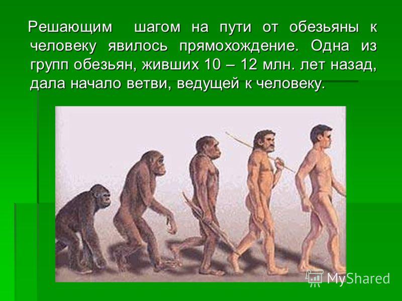 Решающим шагом на пути от обезьяны к человеку явилось прямохождение. Одна из групп обезьян, живших 10 – 12 млн. лет назад, дала начало ветви, ведущей к человеку. Решающим шагом на пути от обезьяны к человеку явилось прямохождение. Одна из групп обезь