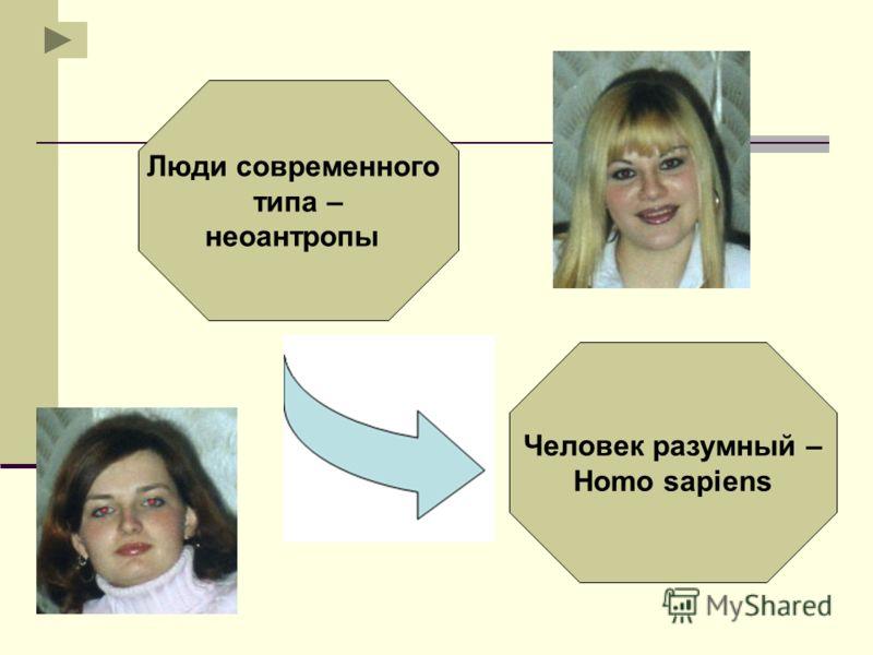 Люди современного типа – неоантропы Человек разумный – Homo sapiens