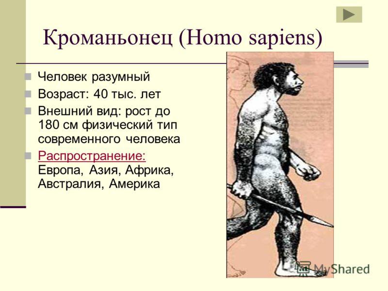 Кроманьонец (Homo sapiens) Человек разумный Возраст: 40 тыс. лет Внешний вид: рост до 180 см физический тип современного человека Распространение: Европа, Азия, Африка, Австралия, Америка Распространение: