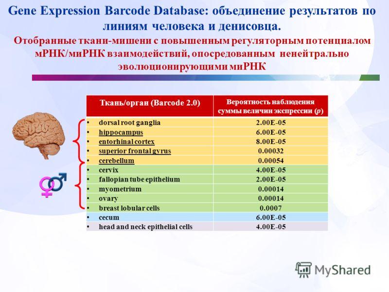 Ткань/орган (Barcode 2.0) Вероятность наблюдения суммы величин экспрессии (p) dorsal root ganglia 2.00E-05 hippocampus 6.00E-05 entorhinal cortex 8.00E-05 superior frontal gyrus 0.00032 cerebellum 0.00054 cervix 4.00E-05 fallopian tube epithelium 2.0