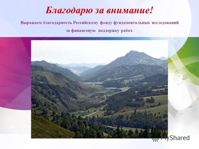 Благодарю за внимание! Выражаем благодарность Российскому фонду фундаментальных исследований за финансовую поддержку работ.