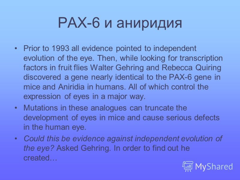 PAX-6 и аниридия Prior to 1993 all evidence pointed to independent evolution of the eye. Then, while looking for transcription factors in fruit flies Walter Gehring and Rebecca Quiring discovered a gene nearly identical to the PAX-6 gene in mice and