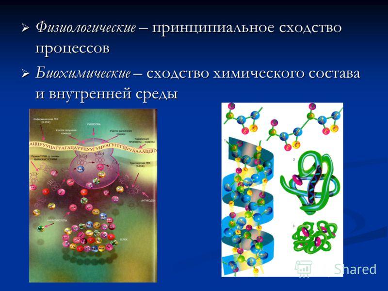 Физиологические – принципиальное сходство процессов Физиологические – принципиальное сходство процессов Биохимические – сходство химического состава и внутренней среды Биохимические – сходство химического состава и внутренней среды