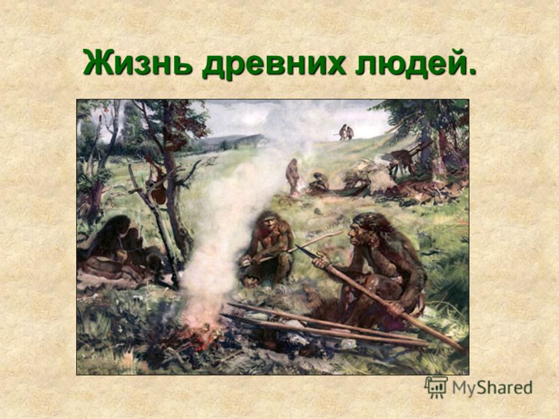 Жизнь древних людей.