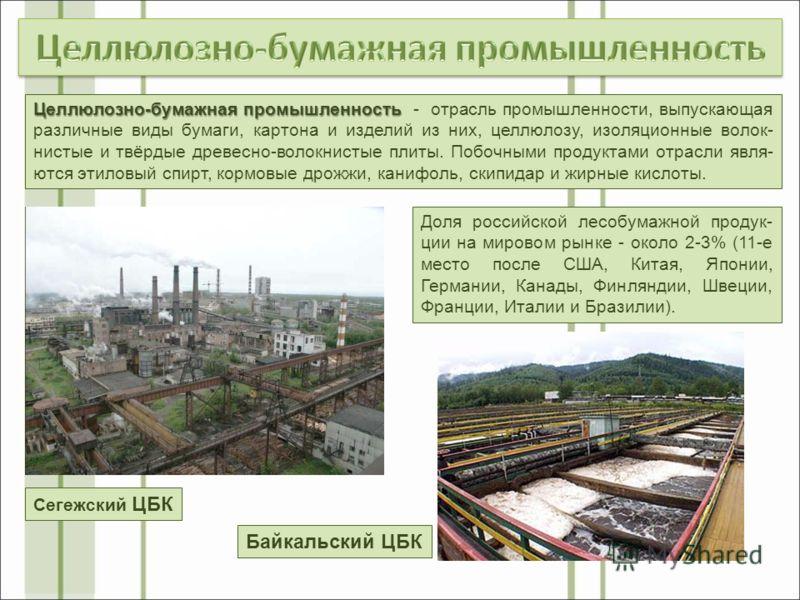 Доля российской лесобумажной продук- ции на мировом рынке - около 2-3% (11-е место после США, Китая, Японии, Германии, Канады, Финляндии, Швеции, Франции, Италии и Бразилии). Целлюлозно-бумажная промышленность Целлюлозно-бумажная промышленность - отр