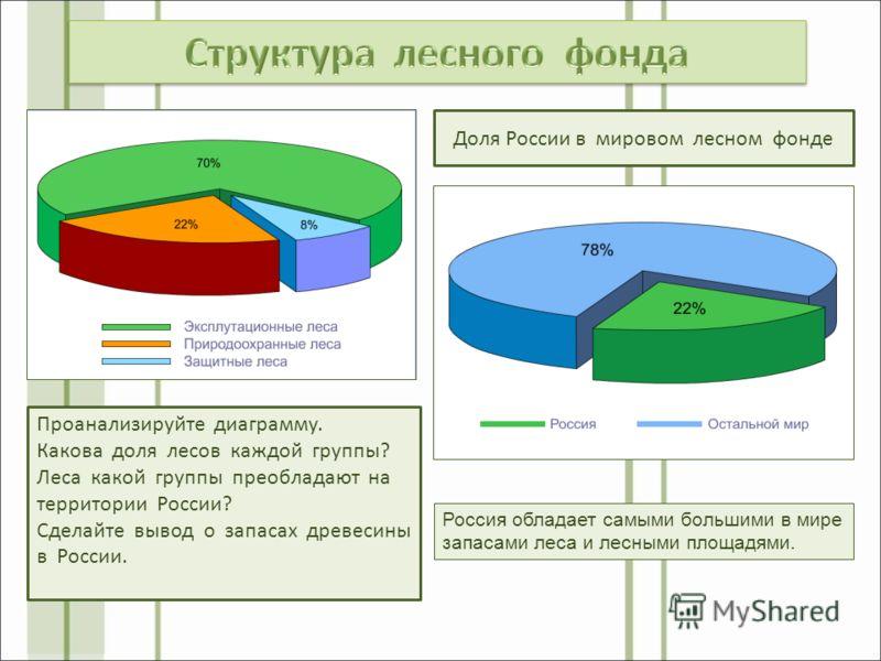 Проанализируйте диаграмму. Какова доля лесов каждой группы? Леса какой группы преобладают на территории России? Сделайте вывод о запасах древесины в России. Доля России в мировом лесном фонде Россия обладает самыми большими в мире запасами леса и лес