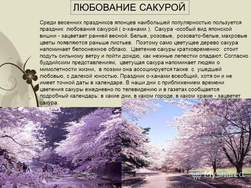 Free Powerpoint TemplatesPage 8 ЛЮБОВАНИЕ САКУРОЙ Среди весенних праздников японцев наибольшей популярностью пользуется праздник любования сакурой ( о-ханами ). Сакура -особый вид японской вишни - зацветает ранней весной. Белые, розовые, розовато-бел