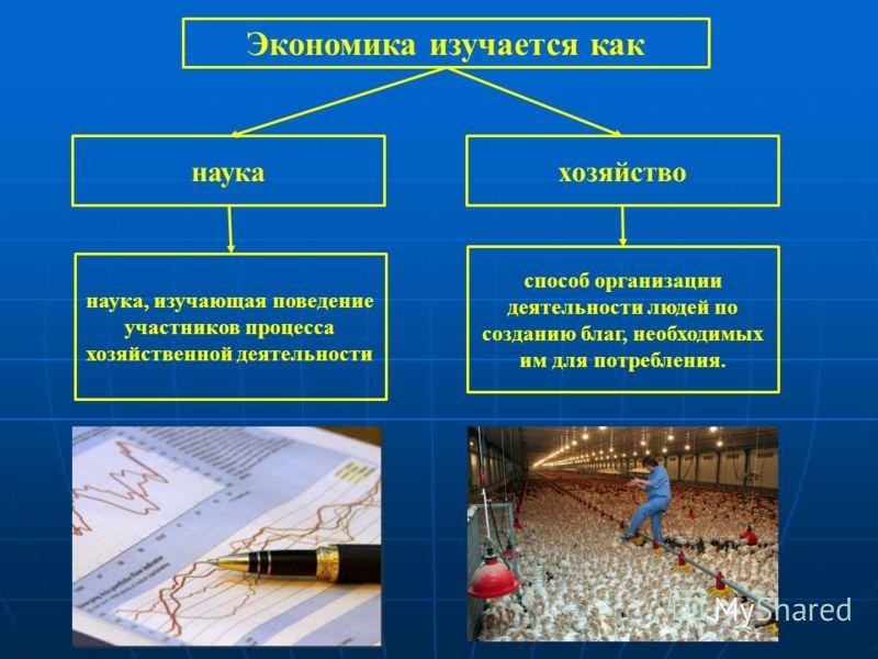 Экономика изучается как наукахозяйство способ организации деятельности людей по созданию благ, необходимых им для потребления. наука, изучающая поведение участников процесса хозяйственной деятельности